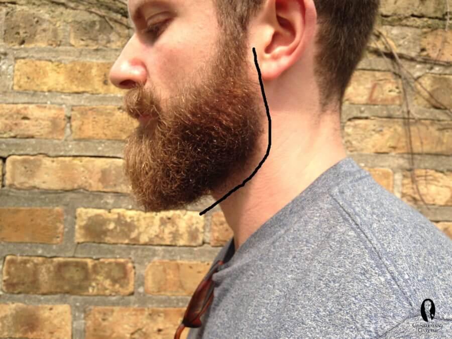 Contur barba gat